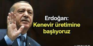 Cumhurbaşkanı Erdoğan: Türkiye kenevir üretimine başlıyor