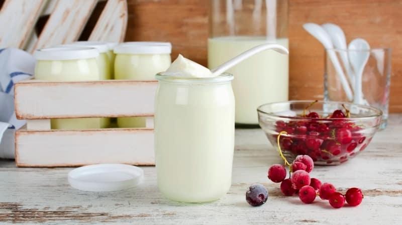 kefir probiyotik süt peynir