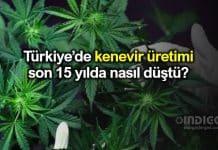 Türkiye'de kenevir üretimi son 15 yılda nasıl düştü?