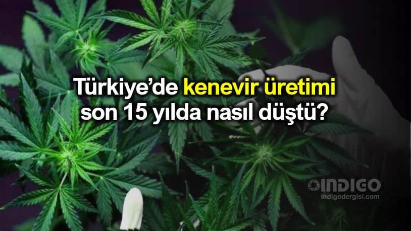 Kenevir üretimi Türkiye'de son 15 yılda nasıl düştü?