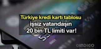 Türkiye kredi kartı tablosu: İşsiz vatandaşın 20 bin TL limiti var!