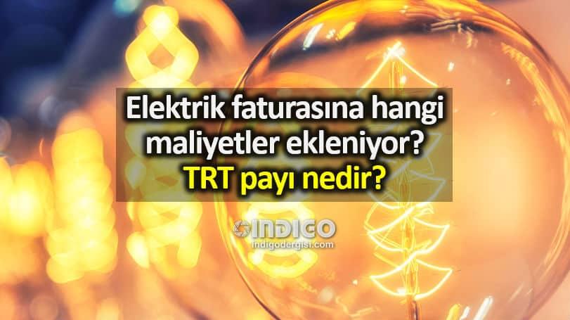 Elektrik faturasına hangi maliyetler ekleniyor? TRT payı nedir?
