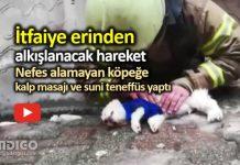İtfaiye eri köpeği kurtarmak için kalp masajı ve suni teneffüs yaptı