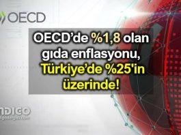 OECD ortalaması yüzde 1,8 olan gıda enflasyonu, Türkiye'de yüzde 25'in üzerinde