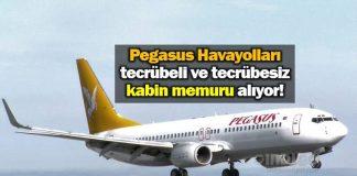 Pegasus Havayolları Kabin Memuru iş ilanı yayınladı