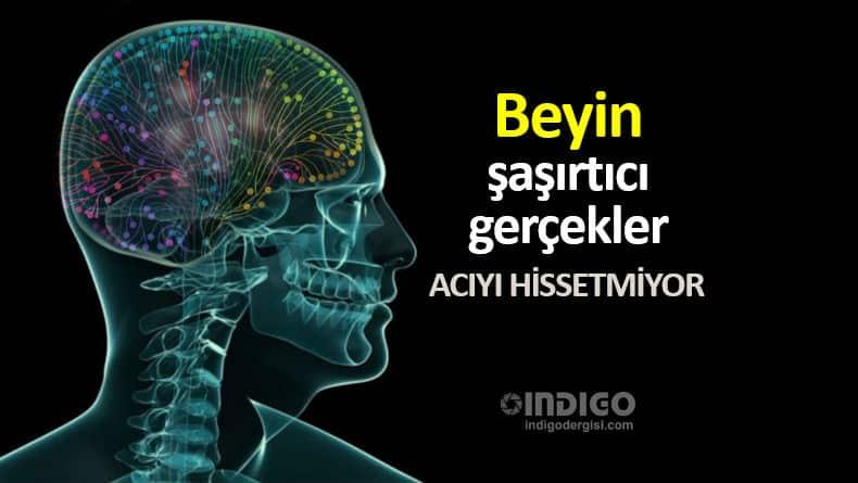 Beyin hakkında şaşırtıcı gerçekler: Acıyı hissetmiyor!