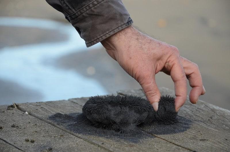 Manyetik siyah kum mucizesi: Biyoenerjiyi düzenliyor