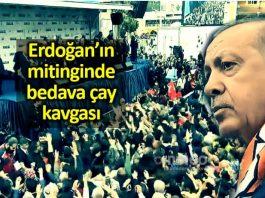 Erdoğan'ın mitinginde bedava çay kavgası