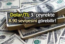 Dolar TL üçüncü çeyrekte 8.90 seviyesini görebilir!