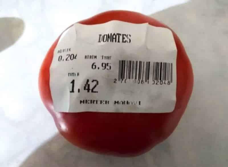 domates fiyatı