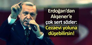 Erdoğan Akşener sert sözler: Cezaevi yoluna düşebilirsin