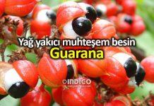 Guarana nedir? Metabolizma hızlandıran yağ yakıcı besin