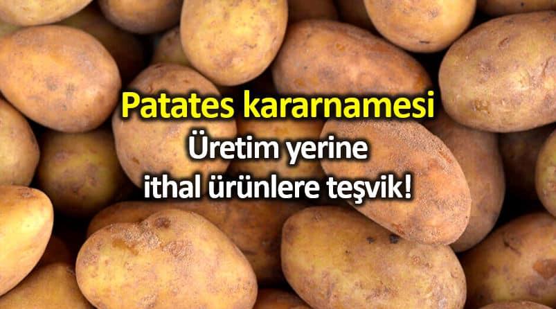 Patates kararnamesi