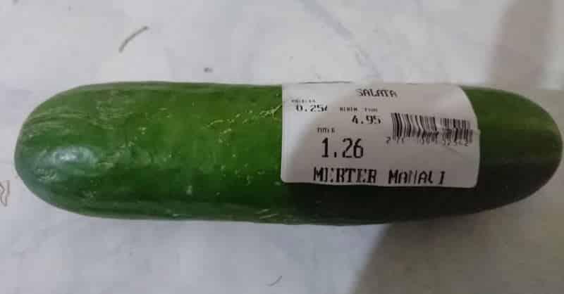 salatalık hıyar fiyatı