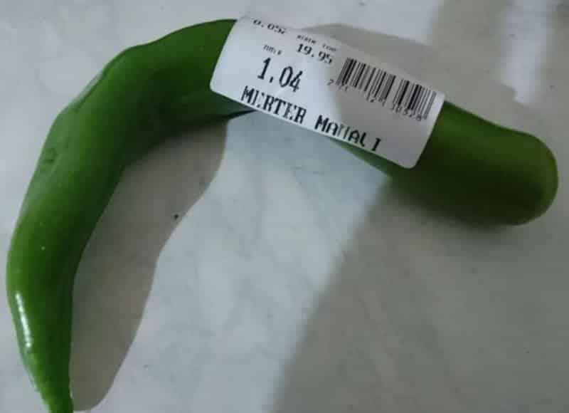 sivri biber fiyatı