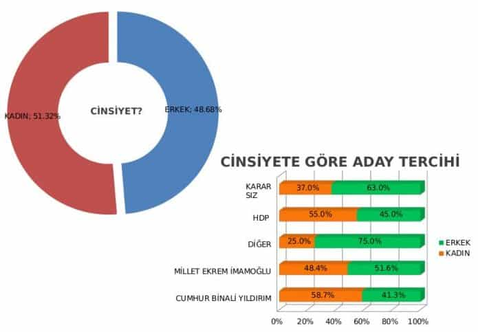 themis anketi istanbul seçimleri
