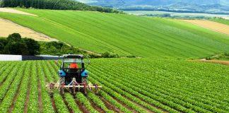 Türkiye İhracatçılar Meclisi: Çiftçi kazanırsa herkes kazanır