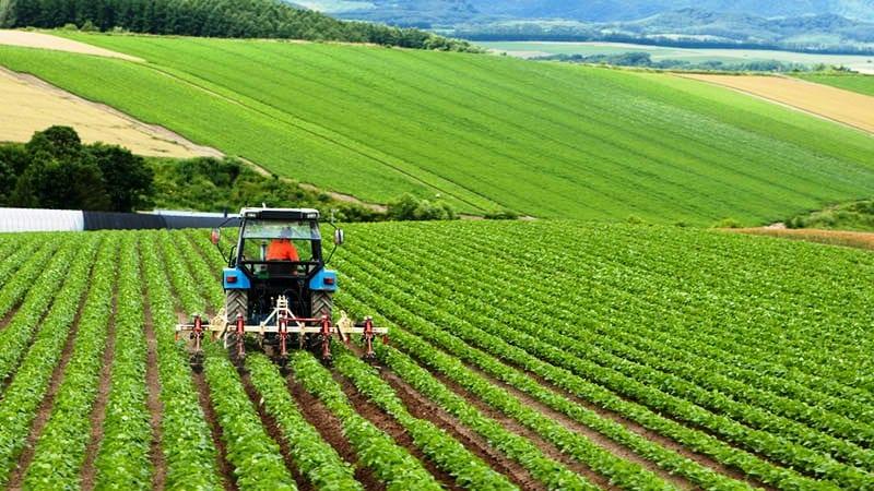 Türkiye İhracatçılar Meclisi TİM Tarım Komisyonu Çiftçi kazanırsa herkes kazanır