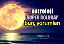 Astroloji: Terazi burcunda Süper Dolunay burç yorumları