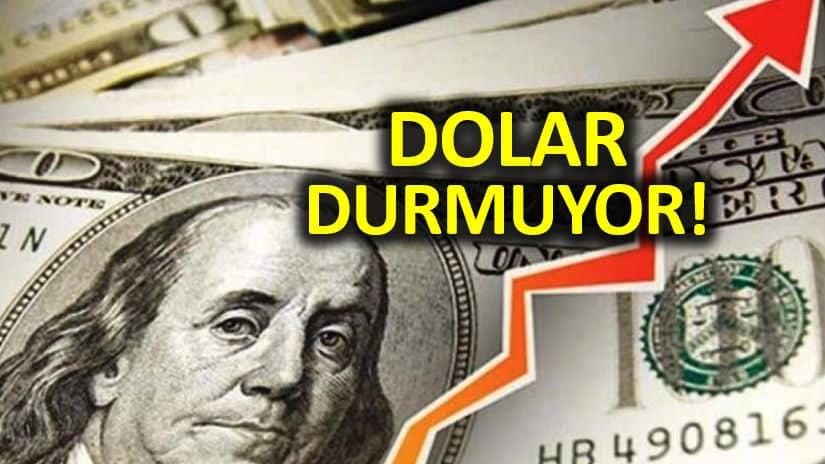 Dolar TL durdurulamıyor: YSK kararı piyasaları alt üst etti!