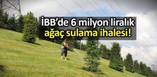 İBB 6 milyon liraya ağaç sulama ihalesi açtı: AKP isme verildi!