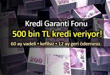 Kredi Garanti Fonu (KGF) KOBİ lere 500 bin TL kredi başvurusu