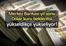 Merkez Bankası yıl sonu Dolar ve enflasyon beklentisi yükseldi!