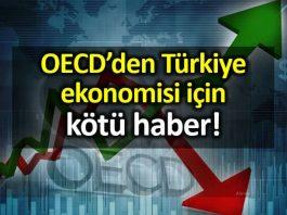 OECD Türkiye büyüme ve enflasyon ile ilgili olumsuz veriler