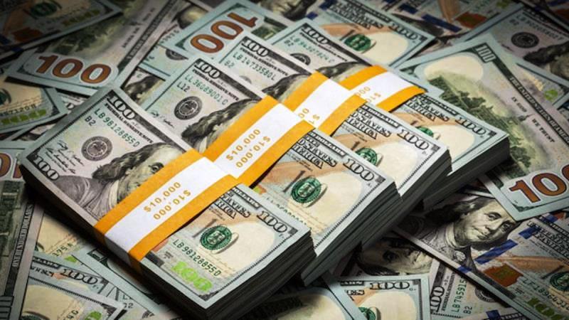 Reuters: Türk kamu bankaları TL yi desteklemek için 4,5 milyar dolar sattı