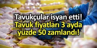 Tavuk fiyatları 3 ayda yüzde 50 zamlandı!