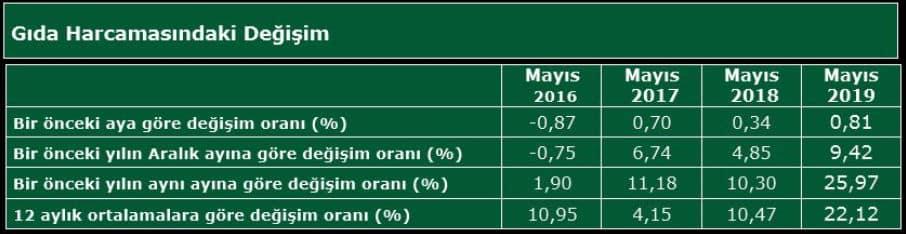 türk gıda endeksi mutfak harcaması mayıs 2019