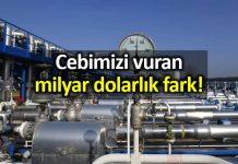 Türkiye nin Rusya gazını Almanya dan daha pahalıya aldığı ortaya çıktı!