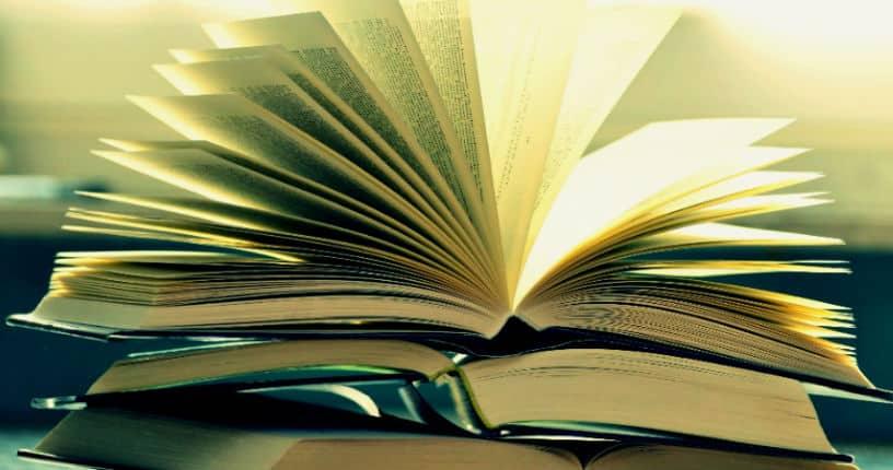 Türkiye'de romanın gelişimi: Yıldız Ecevit ve romanda yabancılaştırma etkisi