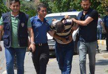 14 yaşındaki öz kızını hamile bırakan şahıs tutuklandı