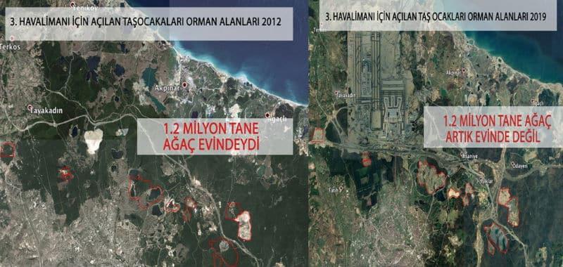 istanbul havalimanı ağaç katliamı
