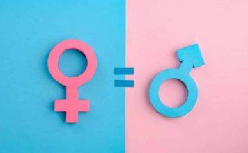 11. Kalkınma Planı nda toplumsal cinsiyet eşitliğine yer yok!