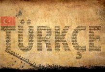 Dil gelişimi ve Türkçeye dair kaygı