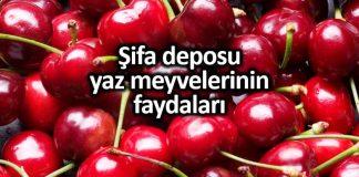 Yaz meyveleri faydaları: Karpuz, kiraz, çilek, kayısı, üzüm