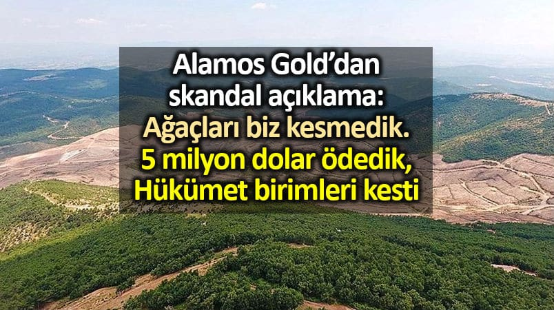 Alamas Gold dan skandal açıklama: Ağaç kesimi için 5 milyon dolar ödedik
