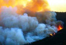 Avukatlardan üç bakana İzmir yangınında ihmalleri var suçlaması