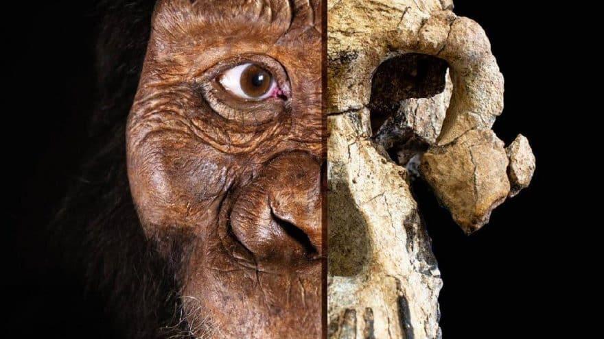 İlk insan: Bulunan en eski kafatası modellendi!
