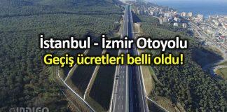 İstanbul - İzmir Otoyolu geçiş ücretleri: En ucuz araç 256 lira
