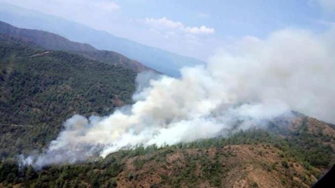 Marmaris Beldibi'nde yangın