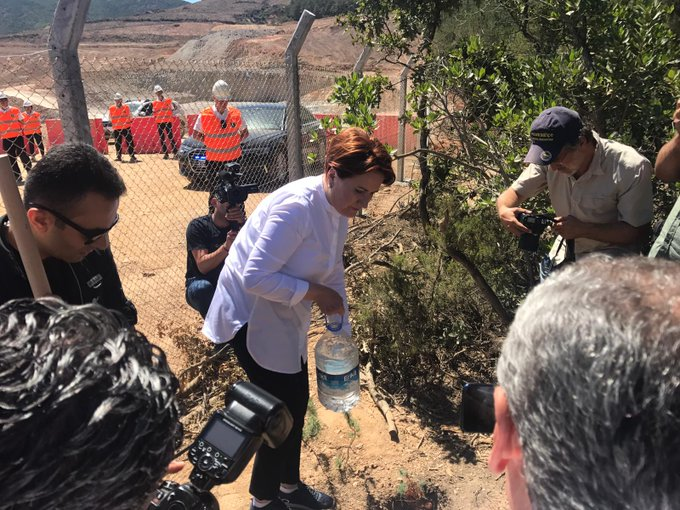 Meral Akşener, Kaz Dağları'nda fidan dikti