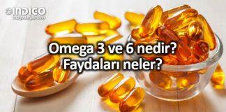 Omega 3 ve Omega 6 nedir? Faydaları neler?