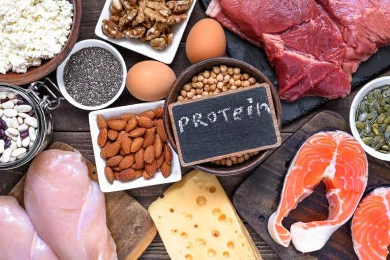 Protein eksikliği belirtileri neler? Hangi hastalıklara neden olur?