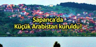 Sapanca da Küçük Arabistan kuruldu: Esnaf memnun!