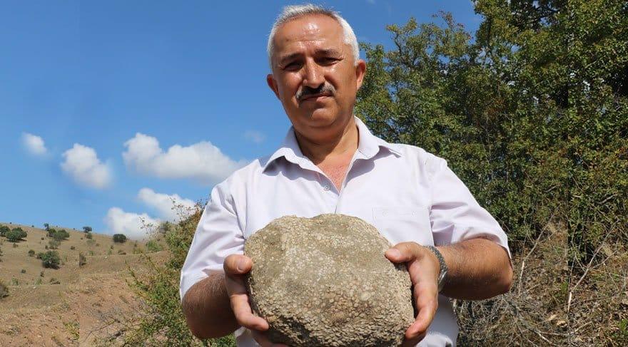 Sivas'ta 55 milyon yaşında deniz canlısı fosil bulundu!