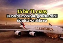 Emirates Havayolları kabin görevlisi ilanı: 15 bin TL maaş, Dubai de ücretsiz konaklama