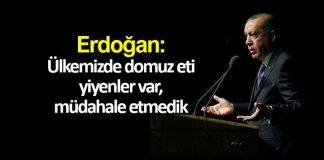 Erdoğan: Ülkemizde domuz eti yiyenler var, müdahale etmedik